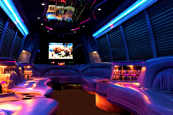 Virgina Beach 18 Passenger Party Bus